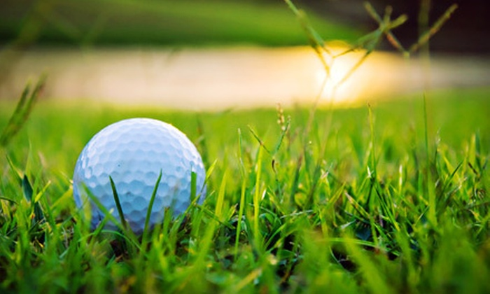 Golf Academy of America - Carlsbad: Two Private 60-Minute Golf Lessons with or Without Round of Golf at Golf Academy of America in Carlsbad (Up to 81% Off)
