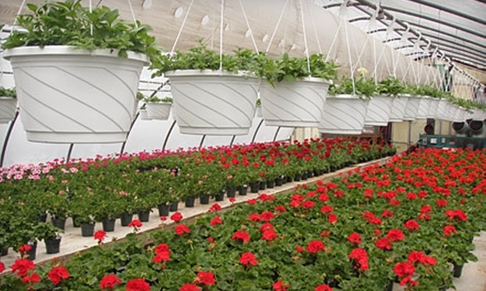 Whispering Pine Garden Center & Florist - Somers: $25 for $50 Worth of Flowers, Plants, and Garden Accessories at Whispering Pine Garden Center & Florist