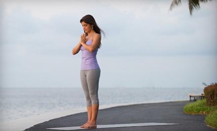 10 Yoga Classes - Rina Yoga in Miami