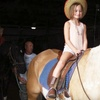 Up to 52% Off Horse-Riding Party or Lessons