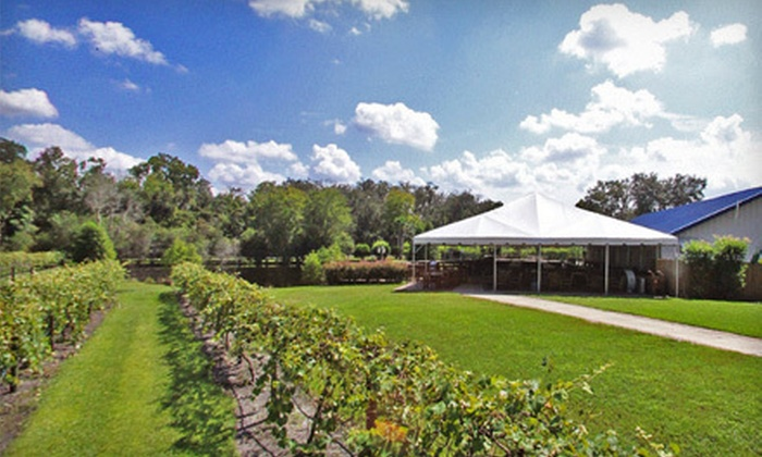 Keel & Curley Winery - Knights Community Club: Friday-Night Wine Event for Two or Weekend Wine Tour and Tasting for Two at Keel and Curley Winery (Up to Half Off)