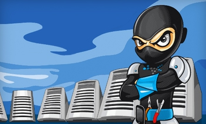PC Ninja - Leesport: $20 for One Hour of Any Computer-Repair Service or Virus Removal at PC Ninja