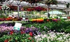 CV - Eltzroth and Thompson Greenhouses - Samuel Miller: Plants and Garden Accessories at Eltzroth & Thompson Greenhouses in Charlottesville (Half Off). Two Options Available.