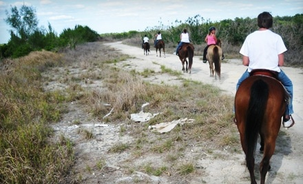 5 Star Stables & Tack - 5 Star Stables & Tack in Lehigh Acres