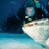 Up to 59% Off Scuba-Diving Class in Keizer