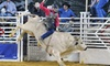 Atlantic City Boardwalk Rodeo - Boardwalk Hall: Atlantic City Boardwalk Rodeo at Boardwalk Hall on October 5 or 6 (Up to 52% Off). Two Seating Options Available.