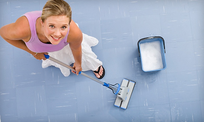 Pretty in Pink Cleaning Services - Sky Harbor: $75 for Two Hours of Cleaning from Pretty In Pink Cleaning Services ($150 Value)