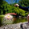 58% Off at Give Yoga Memphis
