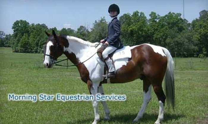 Morning Star Equestrian Services - Port Wentworth: $25 for a One-Hour Horse-Riding Lesson at Morning Star Equestrian Services ($50 Value)