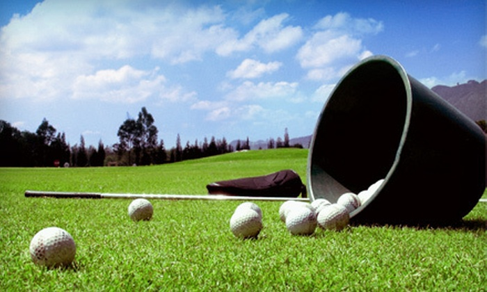 I & G Golf Range - Portland: 12 Small, Large, or Extra-Large Buckets of Driving-Range Balls at I & G Golf Range in Vancouver (Up to 53% Off)