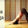 51% Off Classes at Bija Yoga