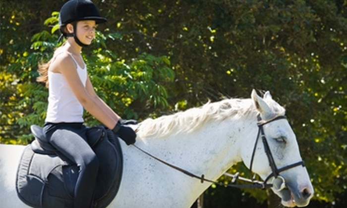 Summer Wind Stables - Chester: $35 for a One-Hour Private Horse-Riding Lesson at Summer Wind Stables in Chesterland ($72 Value)