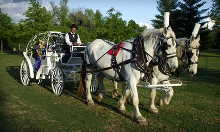 Dreamcatcher Carriage - Garden District: $175 for One-Hour Horse-Drawn Carriage Ride at Tulsa Garden Center from Dreamcatcher Carriage ($350 Value)
