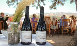 Berryessa Gap Vineyards: Winery Tour and Tasting for Two or Four at Berryessa Gap Vineyards (Up to $64 Off)