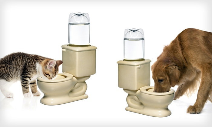 Dog and Cat Refilling Toilet Water Bowl: $29 for a Dog and Cat Refilling Toilet Water Bowl ($39.99 List Price). Free Shipping and Free Returns.