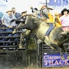 Silver Spurs Rodeo – Up to 40% Off Ticket