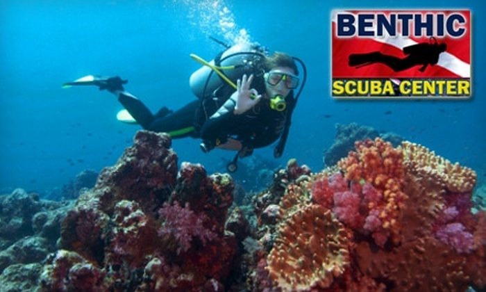 Benthic Scuba Center - Forest Glade: $25 for a Three-Hour Introductory Indoor Scuba-Diving Class and 10% Off Merchandise at Benthic Scuba Centre