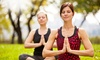 """Yoga in Your Park - Kenmore: 5 or 10 Drop-In """"Yoga in Your Park"""" Classes at Yoga in Your Park (Up to 50% Off)"""