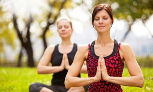 "Yoga in Your Park: 5 or 10 Drop-In ""Yoga in Your Park"" Classes at Yoga in Your Park (Up to 52% Off)"