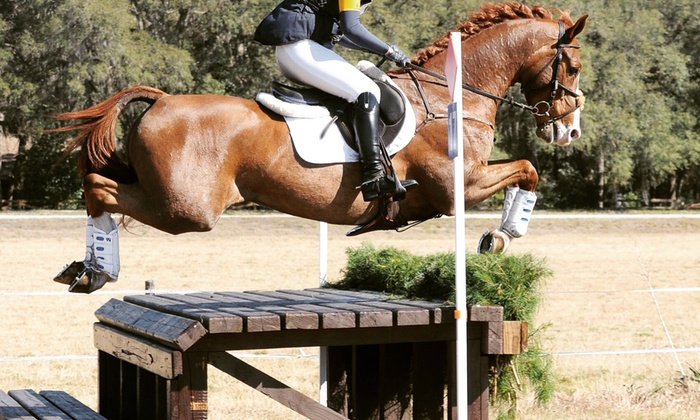 GET Equestrian Sports LLC - Reddick-McIntosh: Up to 54% Off Horseback-Riding Lessons at GET Equestrian Sports LLC