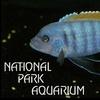 National Park Aquarium - Hot Springs: $5 for Two Admissions to National Park Aquarium (Up to $11 Value)