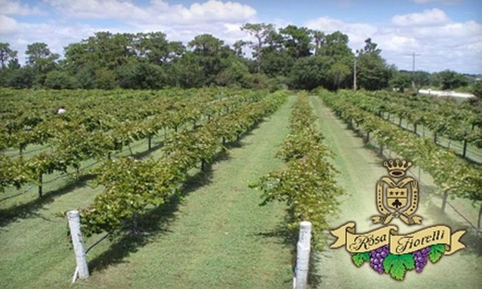 Rosa Fiorelli Winery - Myakka: $5 for Wine Tasting and Vineyard Tour at Rosa Fiorelli Winery in Bradenton