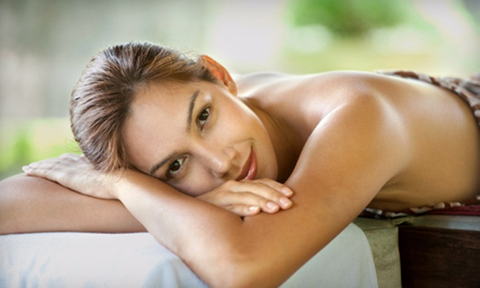 Premier Wellness Center and Day Spa - Hallandale Beach: Acupuncture and Chiropractic Wellness Packages at Premier Wellness Center and Day Spa in Hallendale Beach (Up to 90% Off)