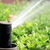 Up to 54% Off Sprinkler-System Services