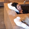 Up to Half Off Mud and Mineral Baths in Calistoga