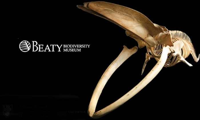 Beaty Biodiversity Museum - Vancouver: $10 for Two Adult Admissions to the Beaty Biodiversity Museum