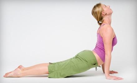 5 Yoga Classes (a $62 value) - Twin Ponds Integrative Health Center in Breinigsville