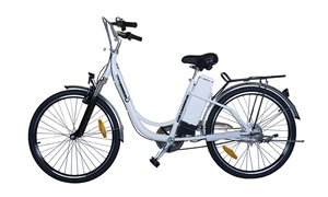 New Age Cycles: Three-Hour Electric-Bike Rental for One in Key Biscayne from New Age Cycles (Up to 59% Off)
