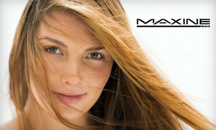 Maxine Salon - Near North Side: $50 for $100 Worth of Haircutting and Color Services at Maxine Salon