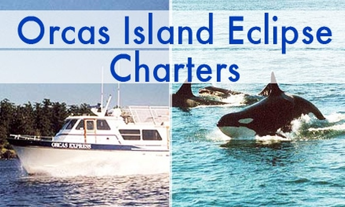 Orcas Island Eclipse Charters - Orcas: $46 for a 3.5-Hour Orca-Whale-Watching Tour from Orcas Island Eclipse Charters ($78 Value)