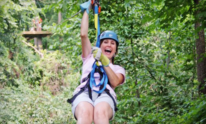 Zip Line USA - Ruth A: $49 for an Adult Zipline Tour at Zip Line USA in Reeds Spring ($99 Value)