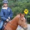 Private Horseback-Riding Lesson. Additional Options Available.