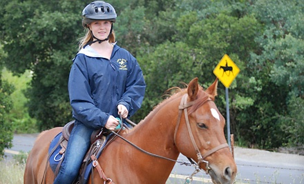 One 1-Hour Private Riding Lesson (an $80 value) - Castle Rock Arabians in Walnut Creek