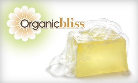 $20 Groupon to Organic Bliss - Organic Bliss in Ann Arbor