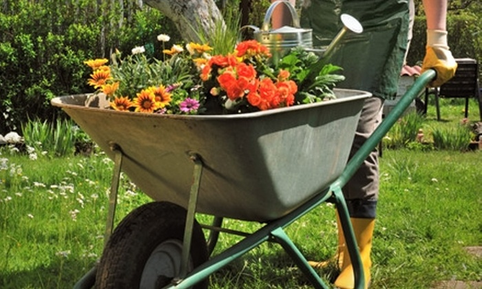 The Good Earth Garden Center - Little Rock: $15 for $30 Worth of Flowers, Plants, and Garden Accessories at The Good Earth Garden Center