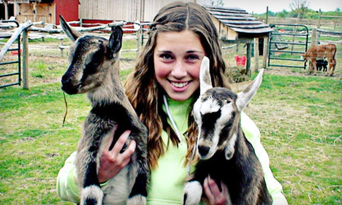 Deer Meadow Farms - Deer Meadow Farms: Family Season Pass for Two Adults and Two or Three Children to Deer Meadow Farms (Up to 55% Off)