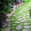 Up to 58% Off from Mill Hill Garden Tour