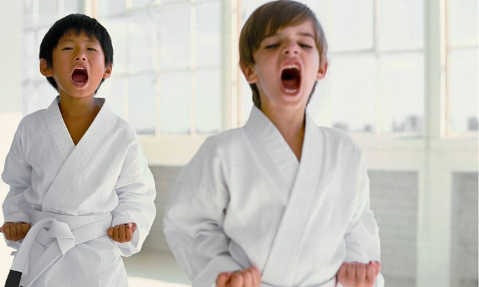 Adamson's Karate Studios - Multiple Locations: $45 for Eight Martial-Arts Classes. Locations in Fishers & Noblesville ($129 Value)