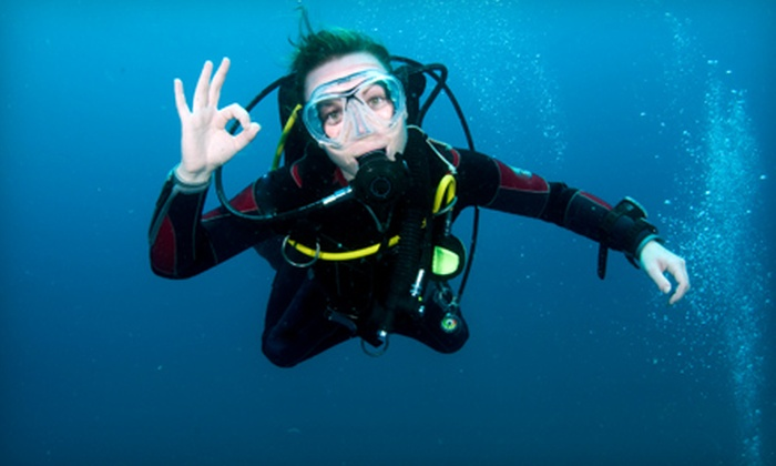 The Dive Shop II - Boyle Park: $25 for a Private Scuba-Diving Lesson at The Dive Shop II ($50 Value)