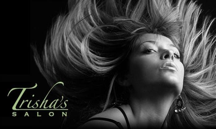 Trisha's Salon - Wyomissing: $25 for a Haircut and Style with Lip and Eyebrow Wax at Trisha's Salon