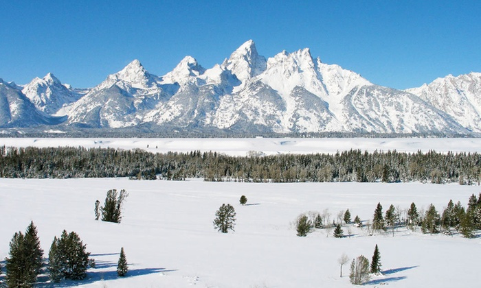 The White Buffalo Club - Jackson, WY: $316 for a Two-Night Stay for Up to Four in a King Room at The White Buffalo Club in Wyoming (Up to $712 Value)