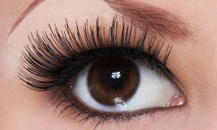 One Full Set of Eyelash Extensions with Optional Refill at Lash by Ann (Up to 65% Off)