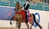 Up to 58% Off Riding Lessons at John White Stables