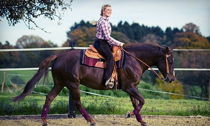 Five Horses, LLC - Northwest Harris: Two, Four, or Six 60-Minute Horseback-Riding Lessons at Five Horses, LLC (Up to 62% Off)