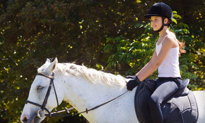 Clay Hill Stables - Springdale: Beginner or Intermediate/Advanced Horseback-Riding Lessons at Clay Hill Stables in Springdale