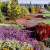 Up to 55% Off Garden Membership in Silverton